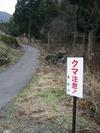Kumachui
