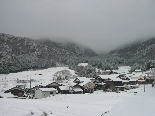 20081207_009