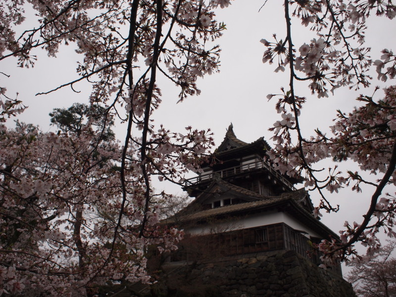 Maruokajou