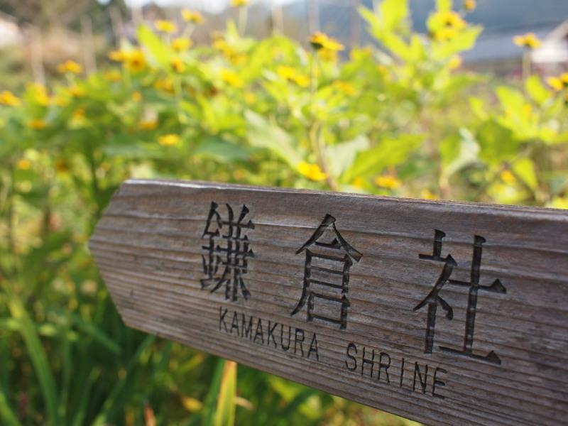 Kamakurasya