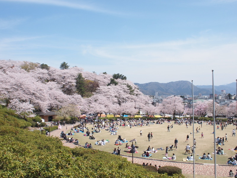 Nisiyamasakura