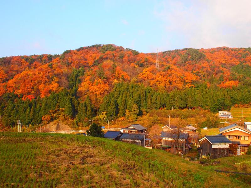 Muranokouyou1