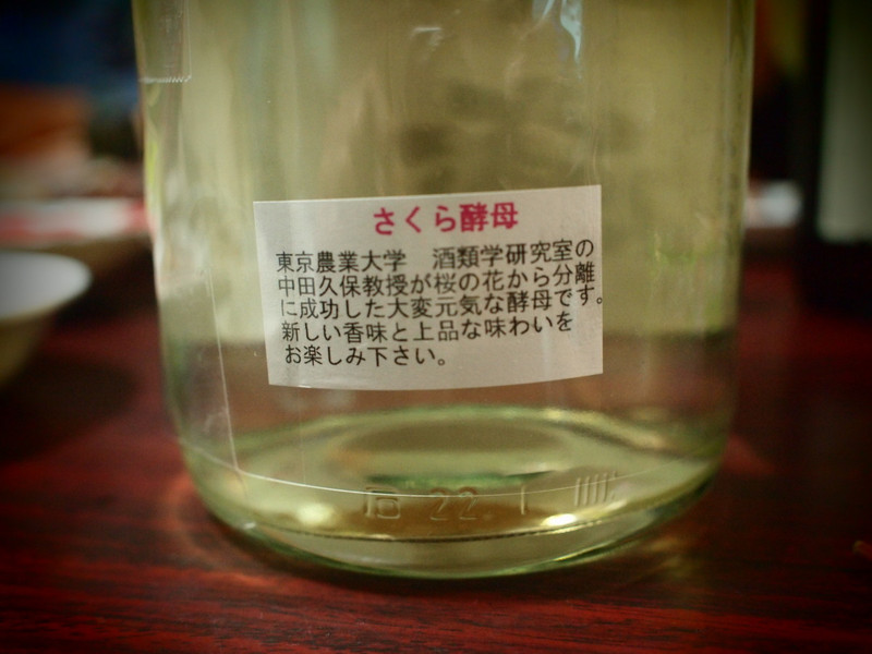 Sakurakoubo2