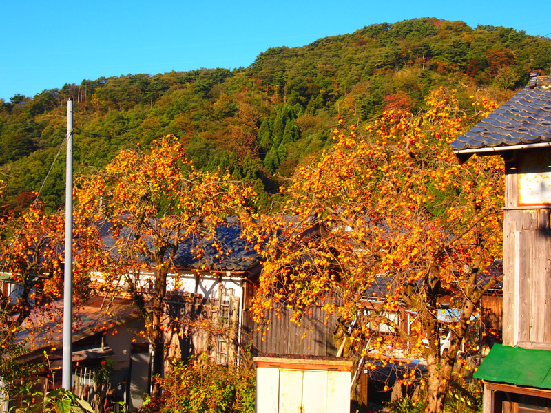 Kakitawawa