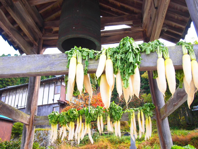 Daikontokanetukidou