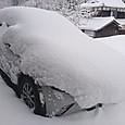 Yukinocx3